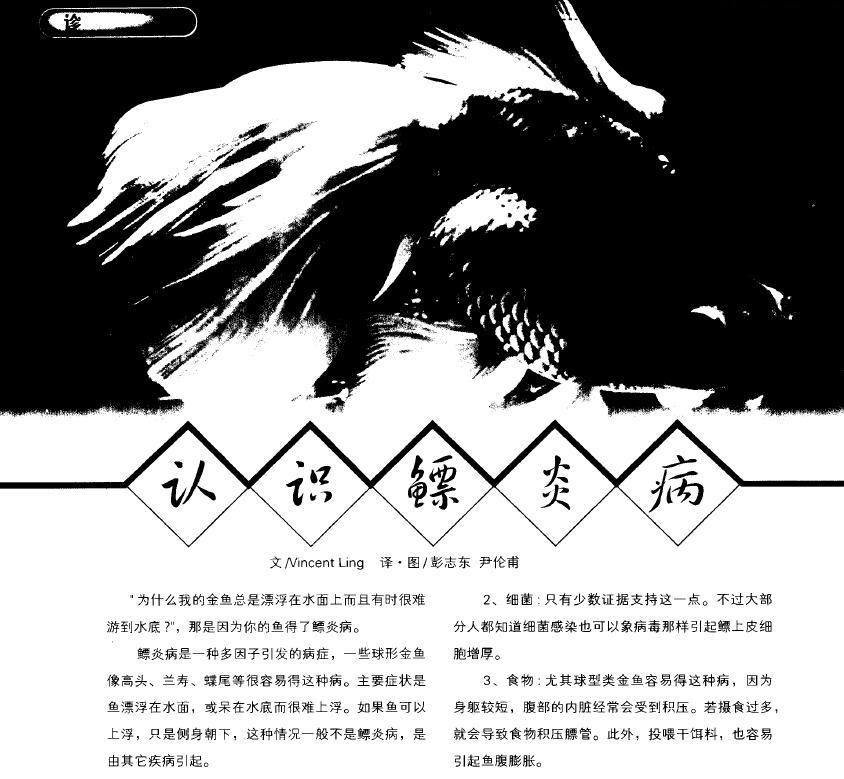 彭志东,尹伦甫.2005.认识鳔炎病.中国观赏鱼,4:62-63.